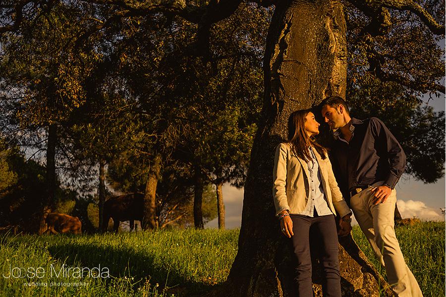 novio y novia en foto en el campo al caer la tarde iluminados por sol calido en foto de pre-boda. El Centenillo. La Carolina