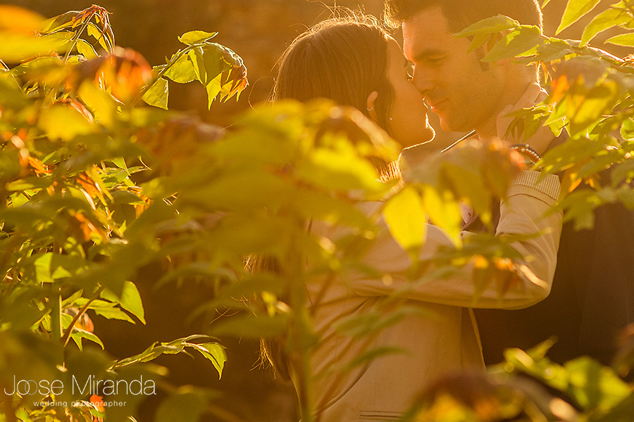 entre las hojas de la primavera, hombre y mujer besándose
