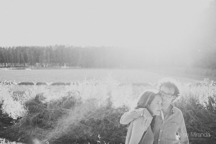 el verano con pareja de novios abrazados en campo de álamos en Granada