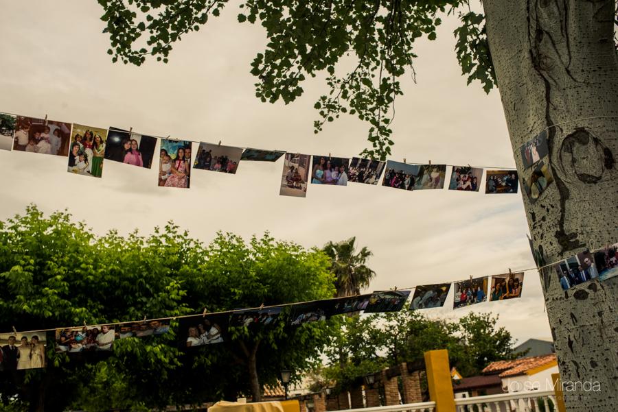Detalle de las fotografías colgadas entre los arboles  del jardín de La Hacienda El Campero en LInares