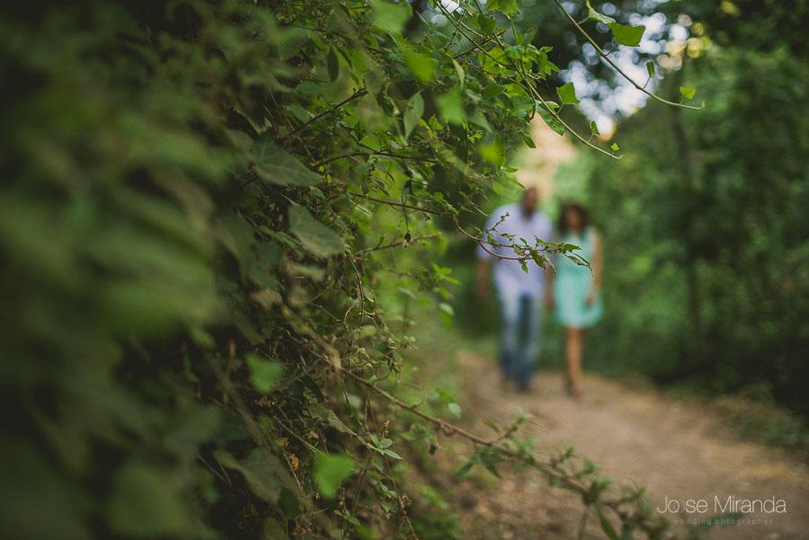 Plantas enfocadas mientras los novios pasean de la mano en segundo plano en Valdepeñas de Jaén