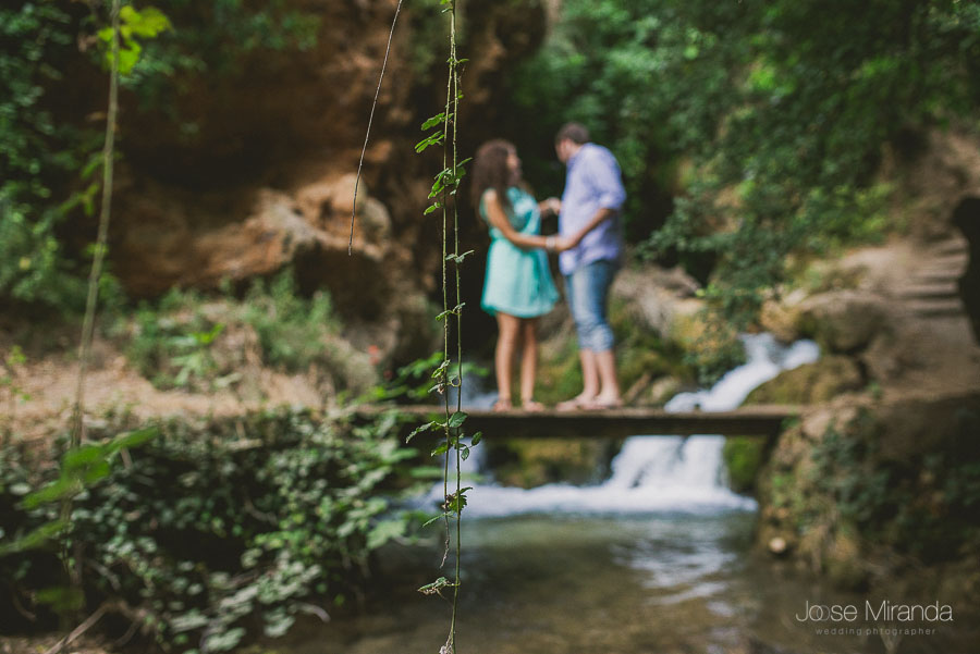 ramas enfocadas y novios desenfocados en el rio de Valdepeñas de Jaén