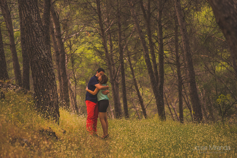 Novios abrazados entre los arboles de un bosque de Jaén en una fotografía de pre-boda de Jose Miranda