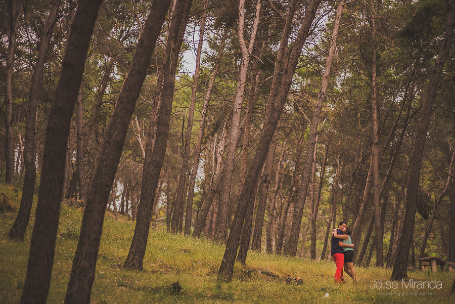 Novios abrazados entre el bosque de pinos de Jaén en una fotografía de boda de Jose Miranda