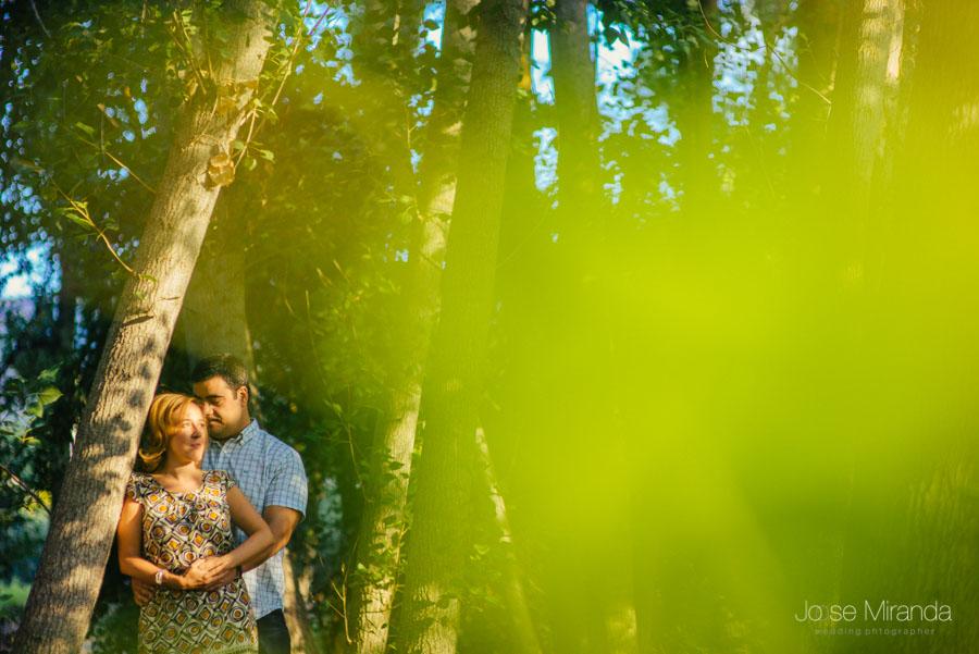 Novios abrazados con un contraluz y el verde de las hojas desenfocadas en primer plano en una fotografía de boda en Jaén Jose Miranda