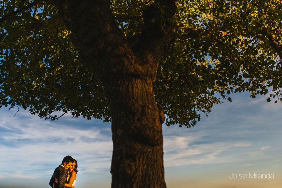 Novios abrazándose bajo las ramas de una arbol en una fotografía de boda en Linares