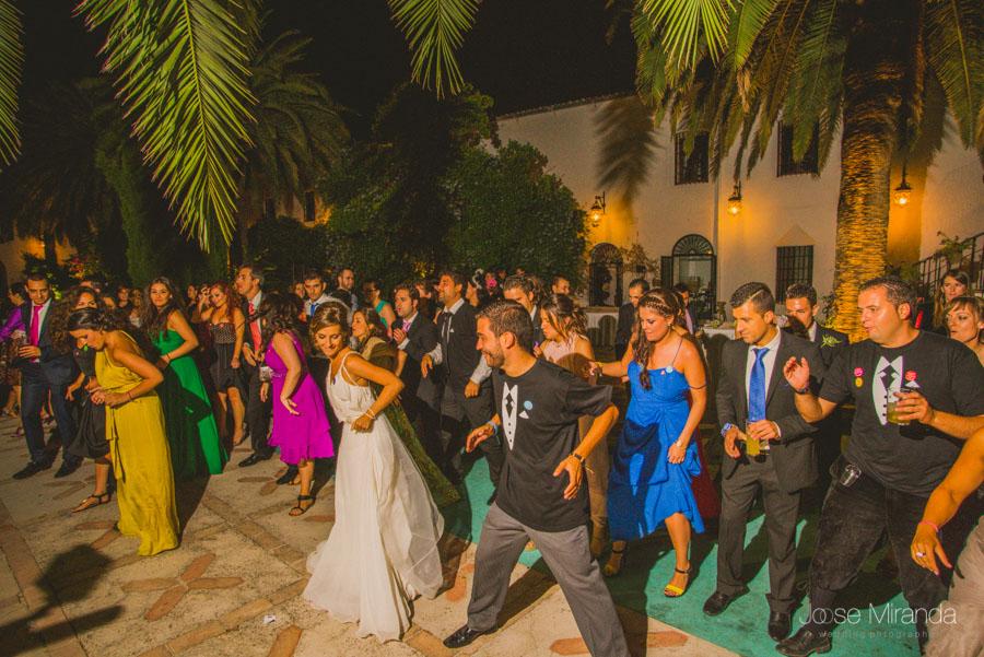 Los novios y sus invitados bailando el baile del cuadrado en una fotografía de boda en el Madroño en Jaén