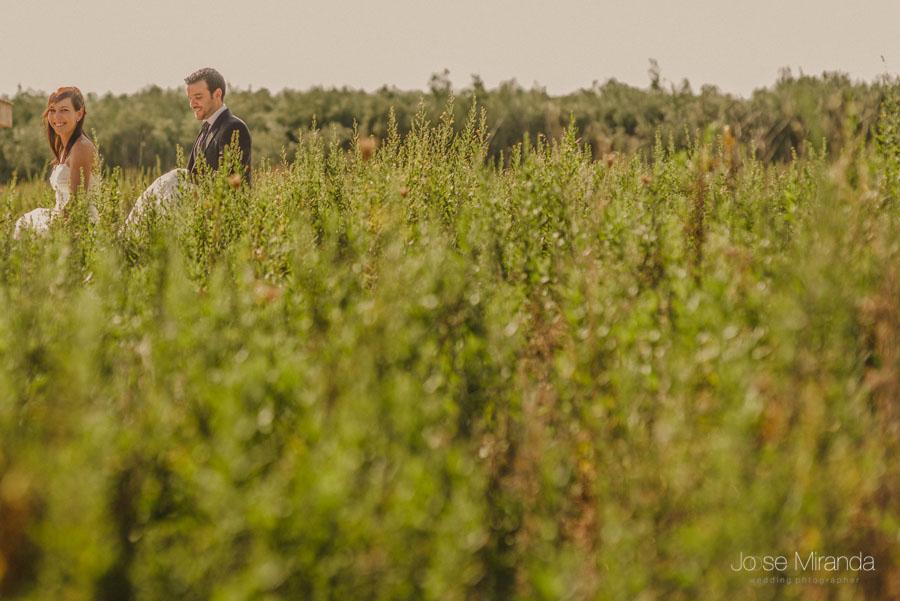 Novia y novio paseando entre plantas verdes en una fotografía de post boda de Jose Miranda Jaén Martos